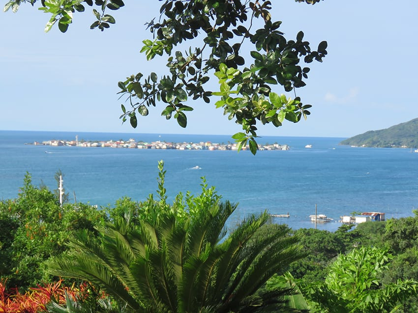 The view of the Cay, the sea and lush planting that greeted us in the mornings on Guanaja