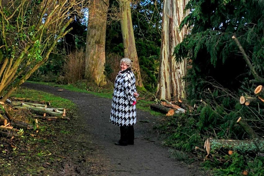 Lady wearing a black and white houndstooth coat and black trousers standing next to some trees and cut logs
