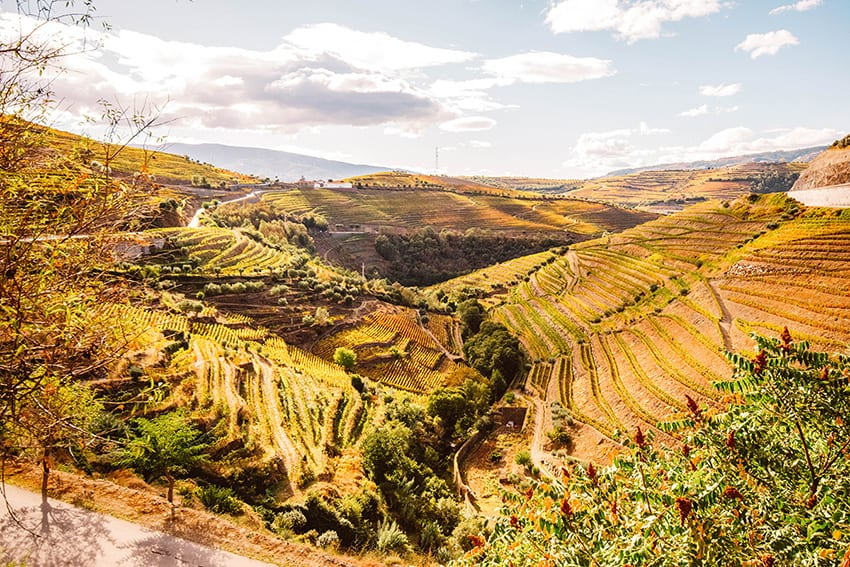 The Douro Valley in Portugal showing rolling hills