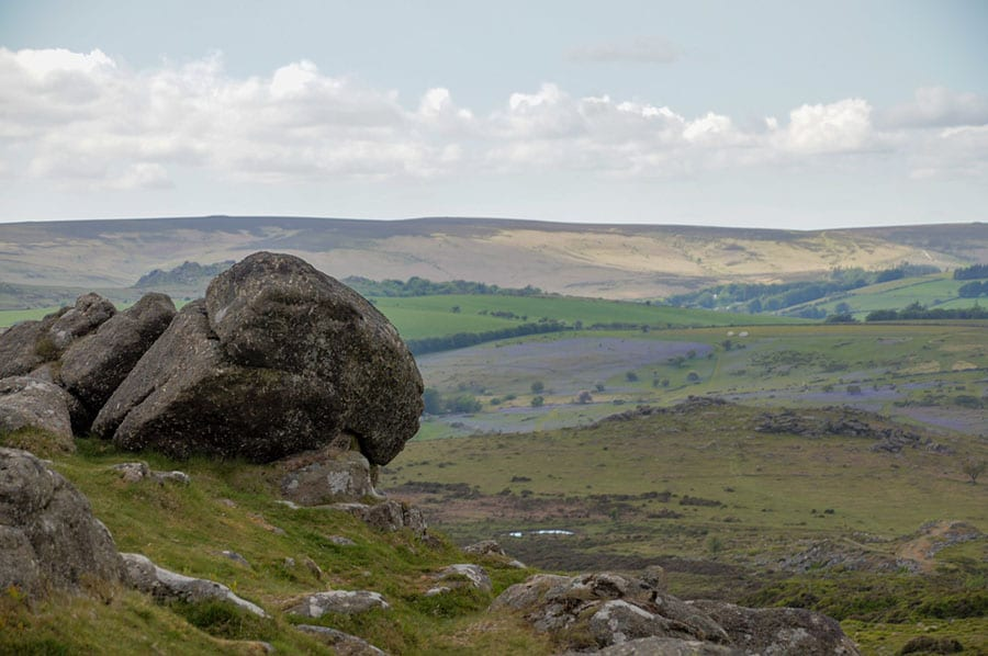 stone in the foreground with fields of green and purple in the background