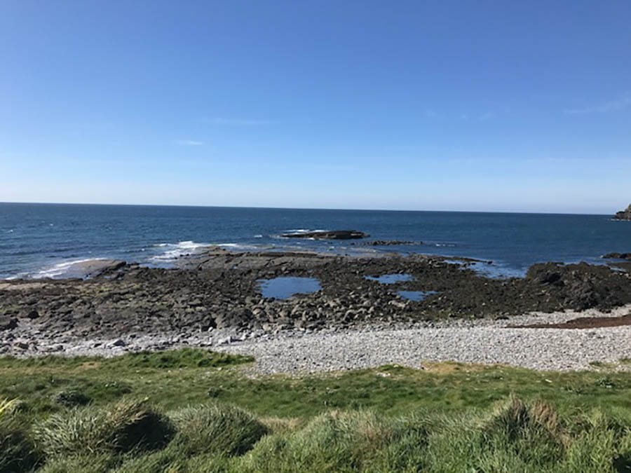 sea with rock pools and grass in the foreground