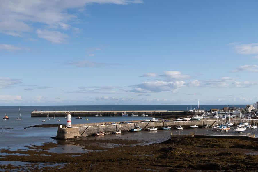 two piers with boats and yachts and seaweed in the forgrround