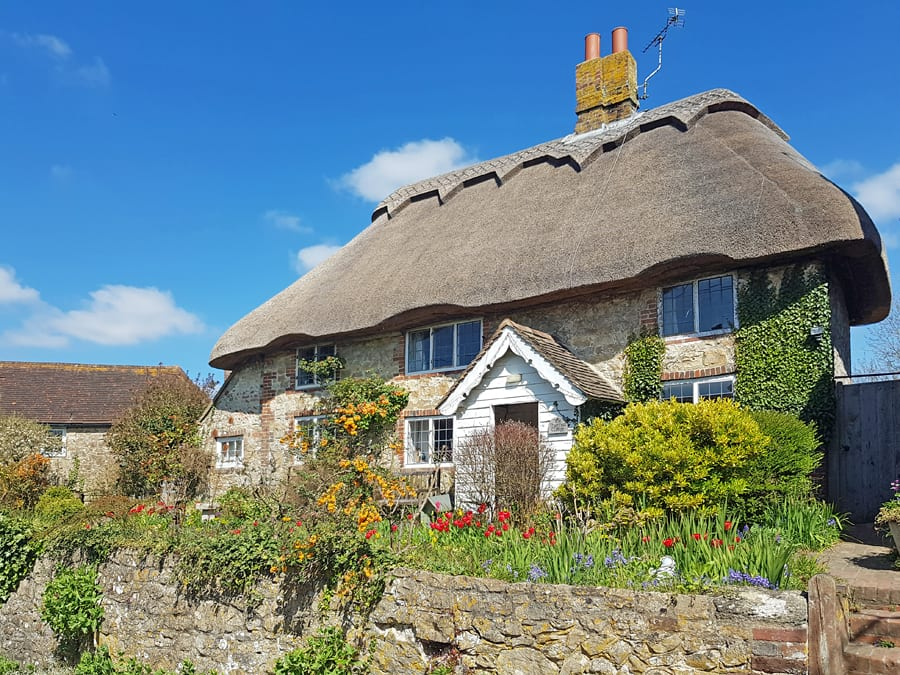 Thatched cottage with stone walls and garden with red tulips