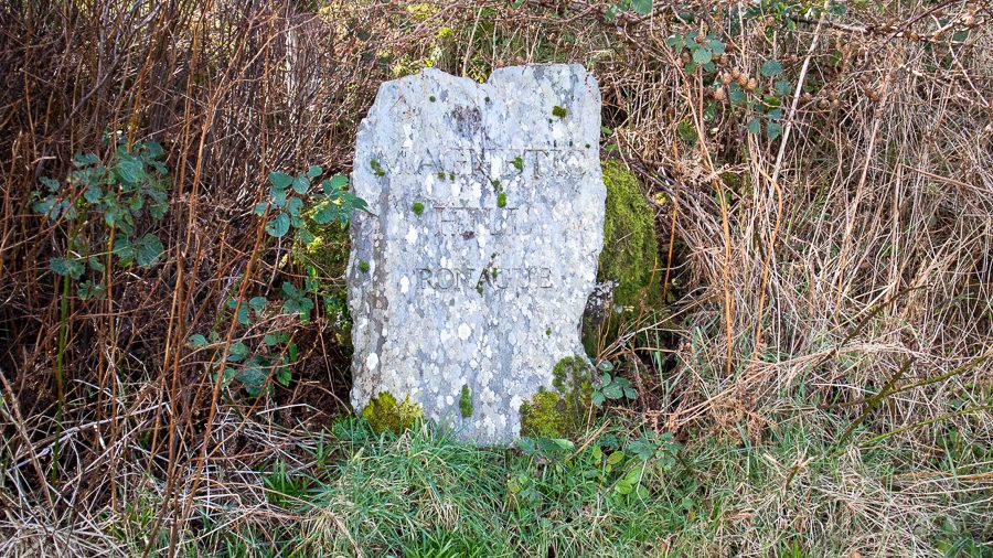 Stone marker saying Magnetic Hill Ronague surrounded by brambles