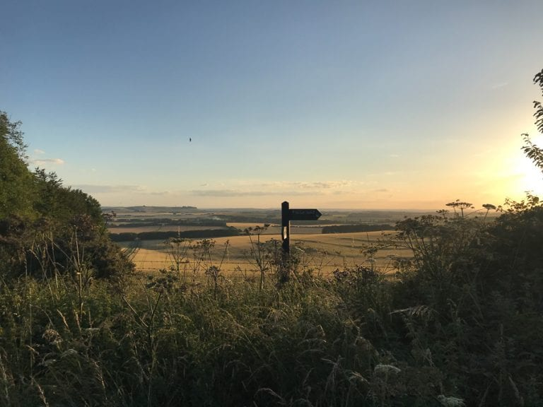 Signpost saying The Ridgeway in amongst the undergrowth with fields in the distance and the setting sun